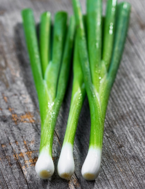 Organic spring onions on old wooden background