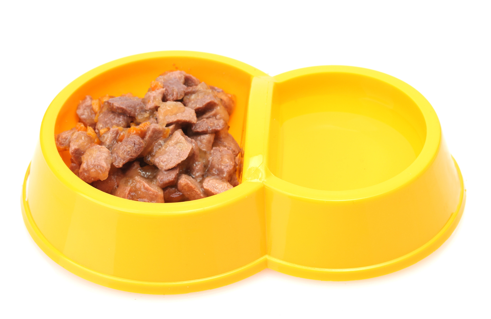 Dog Dragging Food From Bowl